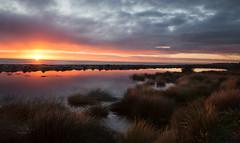 Glorious sunrise (FineArt2C) Tags: seascapephotography dunsbourough seascape landscape trishedwardsphotographerdigitalartist fineartphotographytrishedwards2016