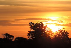 Sunrise this morning (DncnH) Tags: window sunrise morning summer melton countryside leicestershire trees sun sky