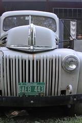 IMG_9723 (Michael Letour) Tags: vintage ford truck southroyalton vermont