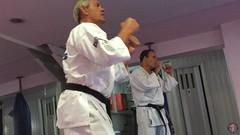 Shihan_SteveJones_Seminar_20_7_2016_735
