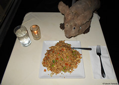Dr. Takeshi Yamada and Seara (Coney Island Sea Rabbit) at the Chef Yu Chinese restaurant by the Times Square in Manhattan, New York on November 30, 2015. 20151130Mon DSCN1955=C. house special fried rice. (searabbits23) Tags: searabbit seara takeshiyamada  taxidermy roguetaxidermy mart animal cryptozoology uma ufo esp curiosities oddities globalwarming climategate dragon mermaid unicorn art artist alchemy entertainer performer famous sexy playboy bikini fashion vogue goth gothic vampire steampunk barrackobama billclinton billgates sideshow freakshow star king pop god angel celebrity genius amc immortalized tv japanese asian tuxedo mardigras tophat google yahoo bing aol cnn coneyisland brooklyn newyork leonardodavinci damienhirst jeffkoons takashimurakami vangogh pablopicasso salvadordali ladygaga donaldtrump hillaryclinton polarbearclub