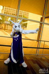 Undertale 7 (MDA Cosplay Photography) Tags: undertale game videogame cosplay costume photoshoot otakuthon 2016 montreal quebec canada chara asriel