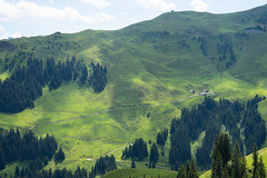 Green valley (harald.bohn) Tags: austria hahnenkamm summer mountains fjell sterrike sommer grnt green shades