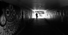 the collective works of strangers (keith midson) Tags: utas universityoftasmania underpass tunnel passage hobart tasmania person walking silhouette