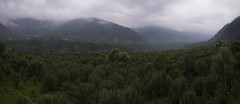 Manali (Ravikanth K) Tags: 500px panorama ultrawide leh ladakh mountains nature outdoor jammuandkashmir clouds manali apple farms fog morning mist house hills green