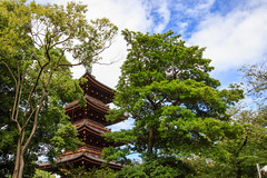 Cach derrire les arbres (StephanExposE) Tags: japon japan nature temple jinja arbre tree bois wood tokyo ueno canon 600d 1635mm 1635mmf28liiusm pagode pagoda stephanexpose