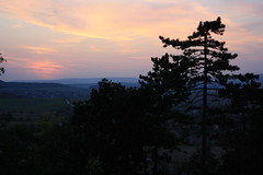 'And into the forest I go, to lose my mind and find my soul' (N6ra) Tags: mind soul forest trees nature calm sunset september canon hungary magyar szomor