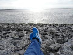 Adidas (Oli-unterwegs) Tags: adidas neuharlingersiel nordsee norddeutschland hafen hafenmauer steine shoes schuhe trurnschuhe blau blue jeans watt ebbe matsch hellblau mann man boy used getragen