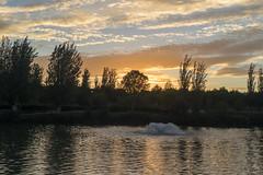 Cabeceras park sunset (lucas2068) Tags: sunset atardecer anochecer poniente sky cielo cloud nube lake lago park parque cabecera valencia spain espaa