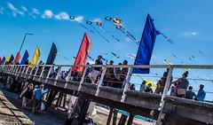 Adelaide International Kite Festival - Image 1 (Sharon Wills) Tags: sky kite festival international adelaide southaustralia semaphore