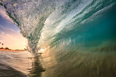 Sandys_1637 wm (MICHAEL A SANTOS) Tags: ocean beach sunrise hawaii sand surf waves oahu barrels beaches eastside sandys eastshore surfphotography inbetweens michaelasantos canon7d rokinon8mmfisheye saintsphotography liquideyewaterhousingc1795 toesphotos liquideyewaterhousings