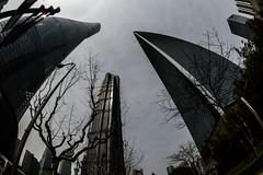 DSC_0270-8 (tamas.doczi) Tags: china skyline nikon skyscrapers shanghai fisheye    pudongskyline   theopener wordfinancialcentershanghai