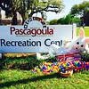 "The Easter Bunny stopped by Parks & Recreation today to go over the details for this weekend's Egg Hunt. He is super excited, and can't wait to see all the children of #Pascagoula! #Goula #GoulaGram #Mississippi #Easter #EasterBunny #EggHunt #EasterEggs • <a style=""font-size:0.8em;"" href=""https://www.flickr.com/photos/95872318@N08/16807217600/"" target=""_blank"">View on Flickr</a>"