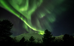 the sky is burning green (christian.denger) Tags: alps green norway night canon eos lights norwegen national aurora fjord northern walimex geographic borealis 6d lyngen