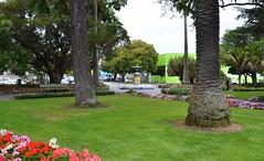 NZA-05 - 2015-02-26 - DSC_7639 (bix02138) Tags: newzealand northisland napier february26 2015 napiernewzealand aotearoanewzealand clivesquare day5newzealandaustralia2015