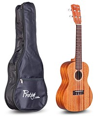 Cordoba Guitars Protege by Cordoba U100CM Concert Ukulele (WUPPLES) Tags: concert cordoba guitars protege u100cm ukulele