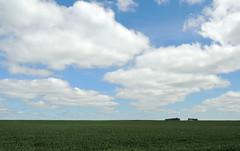 Flat, Flatter, Flattest (Anita363) Tags: minnesota mn inpassing plain farmland farm flat sky clouds cumulus cumulushumilis minimalism