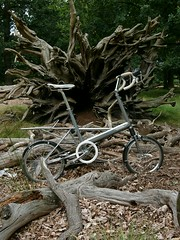 Richmond Moulton Ride 2016 Silver MK3 Tree Stump (rgrkly) Tags: moulton mark3 mk3 rgrkly rogerkelly treeroots