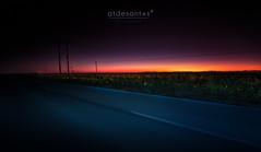 Apocalypto (atdesantos) Tags: sunset landscape paisaje sol anochecer blue hour canon 5dmarkiii darylbenson atardecer puesta de natruraleza nature girasoles espaa