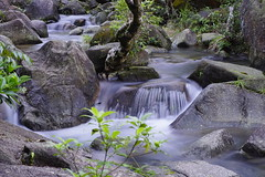 Stream. (Jukai The Pilgrim) Tags: sony a6000 ilce6000 selp18105g world wild water summer earth long exposure river stream tree rock outdoor hiking mirrorless light hongkong colors country forest plants peaceful nature landscape national naturaleza seascape grey waterfall