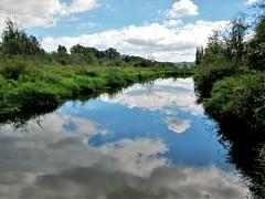 Still Creek (SqueakyMarmot) Tags: vancouver suburb burnaby burnabylakeregionalpark nature stillcreek clouds reflection