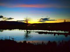 Ross reflections (andrewcaswell) Tags: ross bridge tasmania australia sandstone reflections hdr nightphotography night sunset winter orrange blue trees samsung galaxy s6 edge s6edge