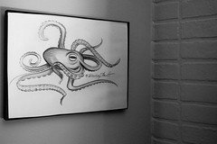 Day One Hundred and Ten (MBPruitt) Tags: octopus drawing black white artwork animal decoration decor