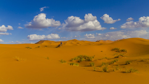 Wüstenlandschaft II