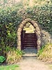 A princess arch (soulfulpoignant) Tags: ireland irish gardens garden gate arch path secret steps ivy gateway northernireland stonewall archway secretgarden stonesteps castlewellan stonepath stonearch stonestairway stonestaircase ivywall stonearchway annsborough northernirish castlewellangardens