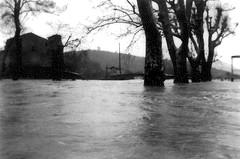 1958_innondation_place_du_pradon_2