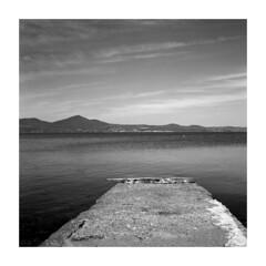 001 Rollei_XP2 Super_005 (dcanalogue) Tags: camera lake classic 6x6 tlr film nature rollei rolleiflex zeiss vintage landscape super xp2 carl medium format filmcamera rodinal ilford planar f35 wlf classicblackwhite xp2s analogicait