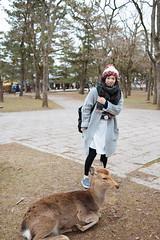 BEN_6314 (benageXYZ-) Tags: travel japan nara     benagexyz