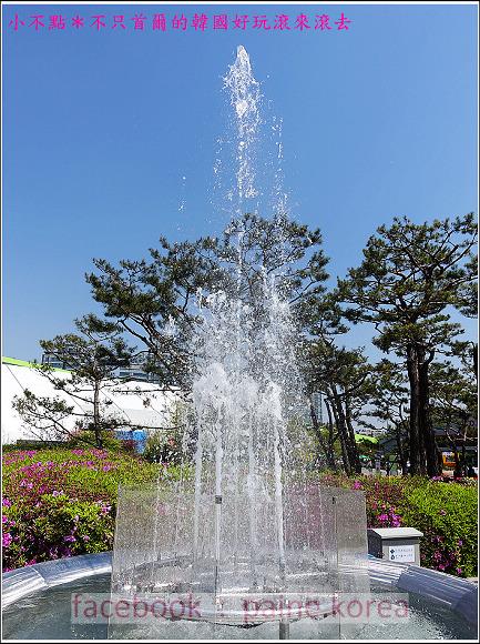 高陽國際花卉博覽 (39).JPG
