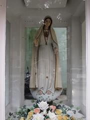 Our Lady of Fatima  (asianfiercetiger) Tags: de macau santo   agostinho largo