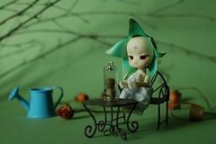 Flower (tanger soto2012) Tags: mi dolls bjd dollzone