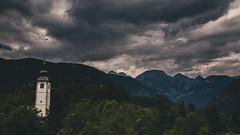 Around Lake Bohinj. (xDiscobobx) Tags: sheep vogel mountains lake clouds panoramas daytime blue beautiful bright slovenia outdoors green cows bohinj nature sport