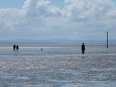DSCF0693 (SierPinskiA) Tags: sea shells beach liverpool sand ironman pools barnacles ironwork mayday seashore merseyside anthonygormley irishsea 2016 anotherplace crosbybeach blundellsands fujixs1