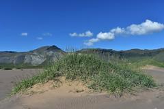 Breiavk - Snfellsnes. (rni Gudjon) Tags: sand gras str fjll breiavk snfellsnes iceland
