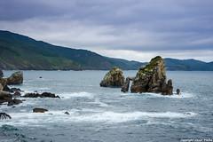 Costa de Bakio (cvielba) Tags: acantilados cantabrico mar vizcaya