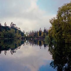 Lake temascal (-Alberto_) Tags: hasselblad500cm 120film kodakportra reflection nature oakland california