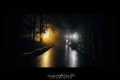 Foggy way (Krueger_Martin) Tags: foggy fog nebel nebelig weitwinkel wideangle 24mm festbrennweite primelense night nacht light licht lights reflex reflections spiegelung weg way natur nature sachsen bastei canoneos5dmarkii canoneos5dmark2 canonef24mmf14lii