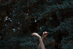 reaching (Celine Schuster) Tags: hands forest fairy skin human green blue melancholy memories alone solitude summer tanne wood