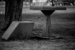 Cold day in the park (Feches) Tags: parquesaavedra park parque plaza airelibre freshair frio cloudy nublado winter invierno tarde noon