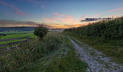 Path to a view (Through Bri`s Lens) Tags: sussex sompting path bridelway fence tree farm farmer chalk chalkdowns brianspicer canon5dmk3 canon1635f4