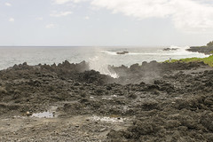 Blow Holes (rschnaible) Tags: maui hawaii us usa pacific tropical tropics outdoors landscape coast coastal seascape rugged rocky lava beds waianapanapa state park road hana ocean water waves