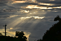 Straight Out Of The Camera [8] (Images by Jeff - from the sea) Tags: nikon d5500 nikkor nikkor70300mm clouds powerlines powerpoles bundaberg bamboo mangotree sky sun storm vr11