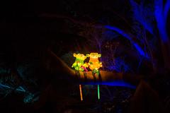 _MG_5329-HDR.jpg (Tibor Kovacs) Tags: lights festival tarongazoo vivid australia colors monkeys sydney night colours