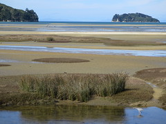 "Abel Tasman national park <a style=""margin-left:10px; font-size:0.8em;"" href=""http://www.flickr.com/photos/83080376@N03/16857359952/"" target=""_blank"">@flickr</a>"