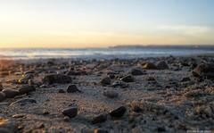 A shell's view (Joe Hengel) Tags: ocean california beach sand rocks shell pacificocean socal southerncalifornia danapoint capistranobeach