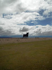 Un toro de Osborne (Rubn Daz Caviedes) Tags: sky espaa clouds logo spain cloudy icon bull cielo segovia nubes toro icono osborne bullfighting logotipo veterano castillaylen torodeosborne manoloprieto fresnodelafuente torodelidia